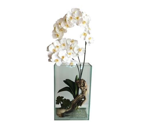 Plaza Vase Clear With Driftwood and white Vanda Orchids