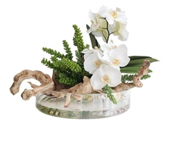 "White Orchid and Round Modern Vase Arrangement 16""D"