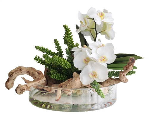 "Orchid and Round Modern Vase Arrangement 16""D"