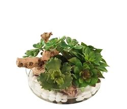 Heritage Modern Floral Succulent in Round Bowl