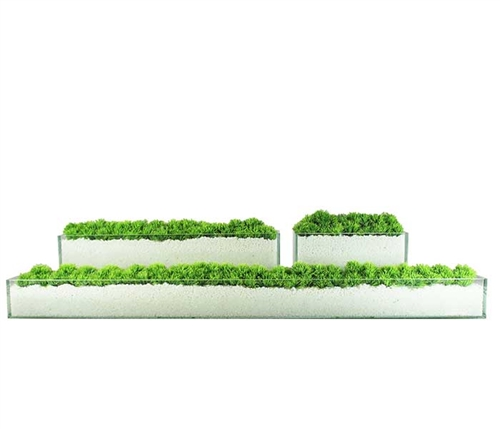 Glass Plate Modern Planter with Grass 12""