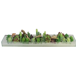 "Oversized glass plate modern planter 52"" x 6"" x 3"" with mixed succulents and driftwood"