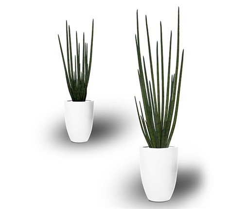 Ben Tapered Vase with Snake Grass Vase