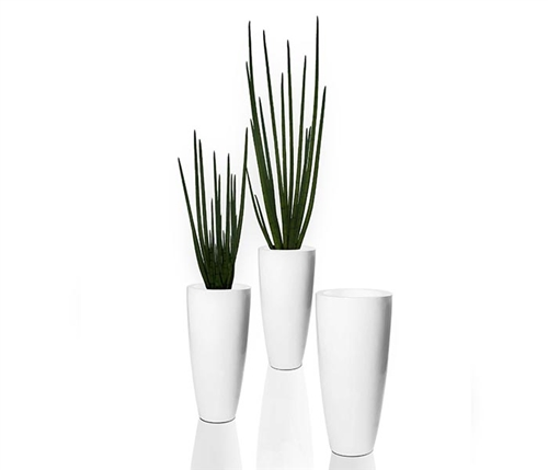 Dax Tapered Vase with Snake Grass Vase