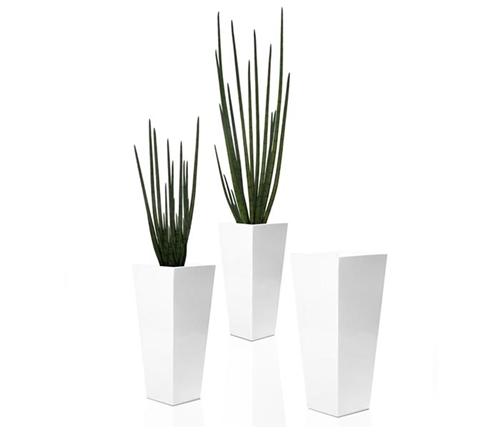 Beau Modern Vase with Snake Grass