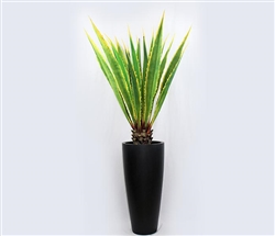 Ashton Modern Tapered vase with giant agave plant - BLACK