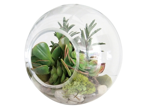 assorted terrariums at mh2g