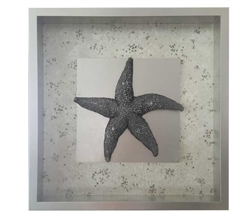 Starfish and Coral Modern Wall Accessory