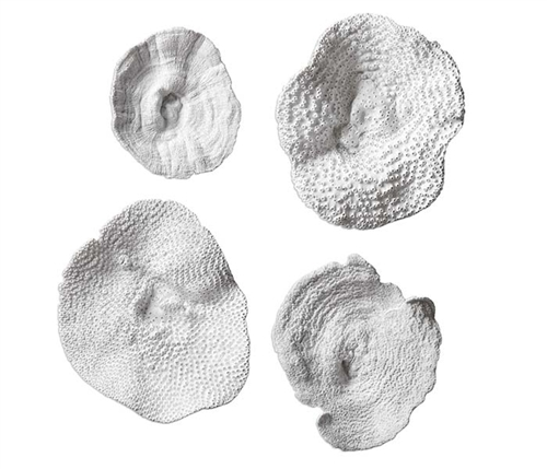 Sea Coral Modern Wall Decor, Set of 4