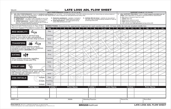 Briggs Healthcare Late Loss ADL Flow Sheet