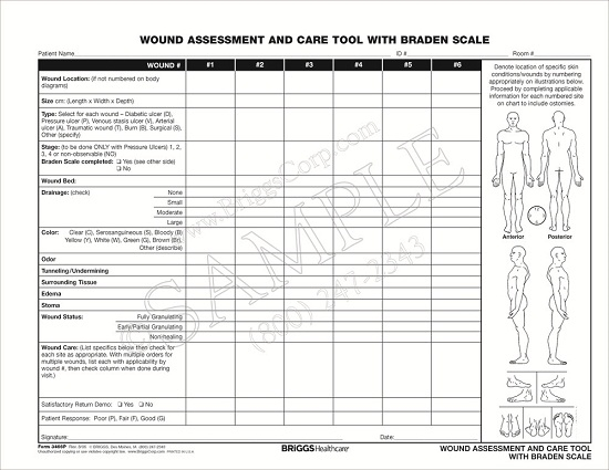 briggs healthcare 3466p wound assessment and care tool with braden scale 100 per pad Alzheimer's Disease Diagram