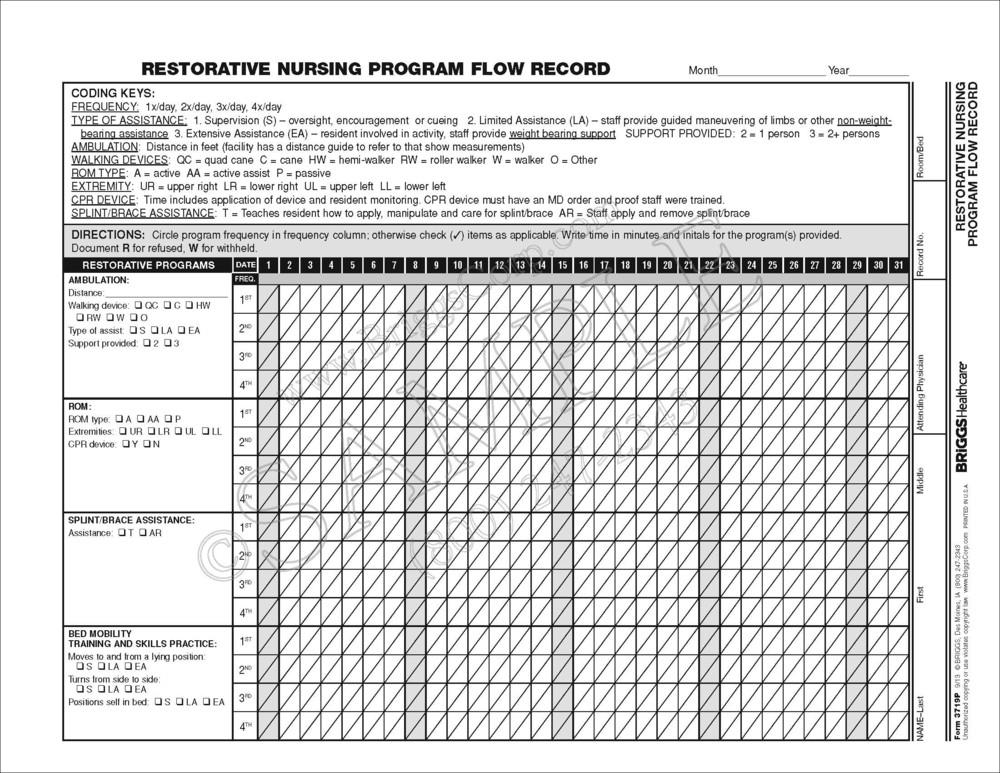 restorative nursing flow sheet