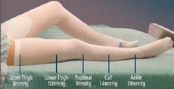 f800531dad Anti-Embolism Stockings | Compression Stockings Extra-Large Regular