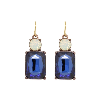 Blue Gem Simple Earrings - LTE08B