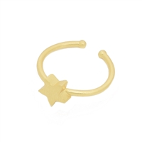 Small Star Ring in 20K Matt Gold Plate- RNL15G