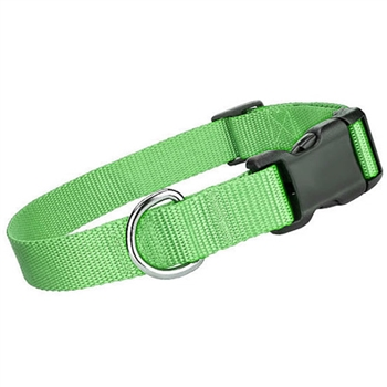 nylon collar green