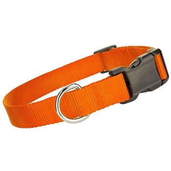 nylon collar orange