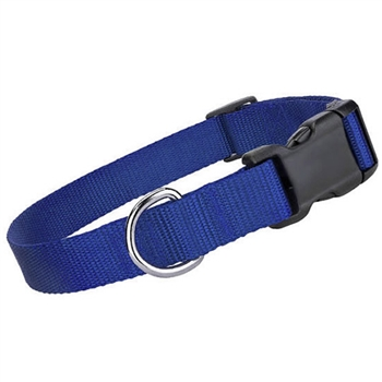 nylon collar blue