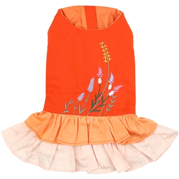 Color Block Garden Dress dog shirt
