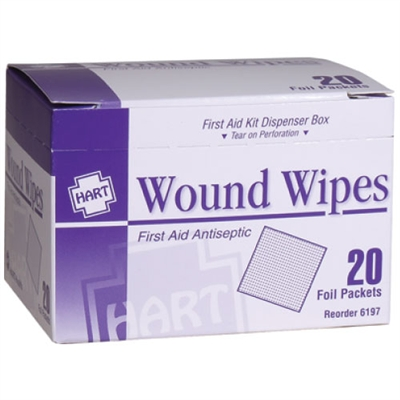 Antiseptic Wipes - 20-Pack