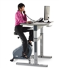 LifeSpan CS-DT7 Upright Exercise Bike & Desk