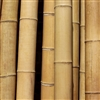 Big Thick Natural Bamboo Poles