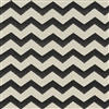 Covington Solution Dyed Performance Outdoor/Indoor Fabric SD-Cozumel 916 Ebony/Ivory