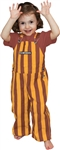 Maroon & Gold  Toddler Game Bibs