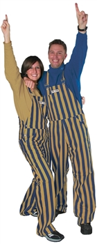 Navy Blue and Gold (Metallic) Game Bibs Overalls