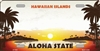 Hawaii Blank License Plate Vinyl Cricut Pazzles