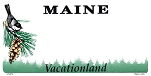Maine Blank License Plate Vinyl Cricut Pazzles