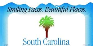 South Carolina Blank License Plate Vinyl Cricut Pazzles