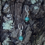Ocean Jasper Lever Back Earrings