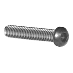 Stainless Steel Rounded Head Screw M6