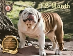 "2018 Burt ""King of the Bulldogs"" 18 Month Calendar"