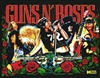 ColorDMD for a GunsN'Roses Pinball Machine