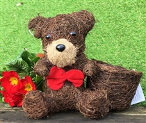 Brushwood Teddy Planter 26cm (x36)
