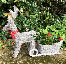 Reindeer with Sleigh Planter 52cm (x16)