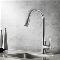 Vinnova Bayberry Single-Lever Pull-Out Kitchen Faucet