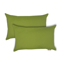 Olivia Quido Sunbrella Spectrum Kiwi Boudoir Outdoor Pillow 2-pack