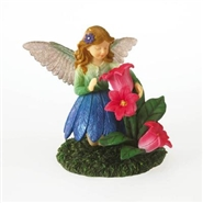 Hummingbird Fairy - Skylar...Embrace The World