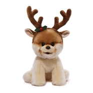 Boo With Antlers - World's Cutest Dog
