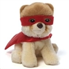 Itty Bitty Boo Superhero - World's Cutest Dog