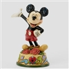 Mickey - Birthday January