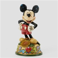 Mickey - Birthday November