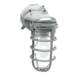 DE 100W Weather Tight Light