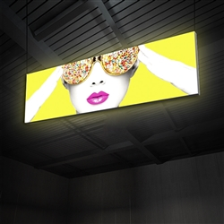 "10ft x 3ft Vector Frame Hanging Light Display . These lightweight, illuminated structures feature 4"" extrusion frames, LED lighting and push-fit fabric graphics that help you stand out in any environment."