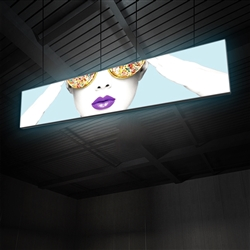 "15ft x 3ft Vector Frame Hanging Light Display . These lightweight, illuminated structures feature 4"" extrusion frames, LED lighting and push-fit fabric graphics that help you stand out in any environment."