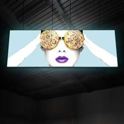 "15ft x 6ft Vector Frame Hanging Light Display . These lightweight, illuminated structures feature 4"" extrusion frames, LED lighting and push-fit fabric graphics that help you stand out in any environment."