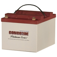 Concorde RG24-20 24V Aircraft Battery